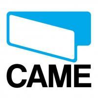 Автоматическая дверь CAME CAME 119RIU011