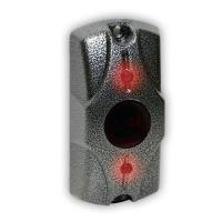 Кнопка выхода Циклоп ИК серебряный антик
