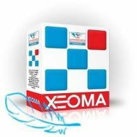 Xeoma Xeoma Pro, 4 камеры, 1 год обновлений