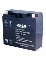 Аккумуляторы CASIL CA12180