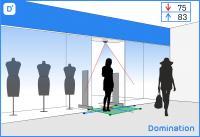 Domination Модуль Подсчет посетителей